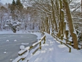 winter-elkeringhausen07