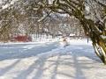 winter-elkeringhausen09