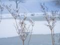 winter-elkeringhausen19