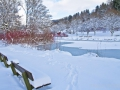 winter-elkeringhausen20