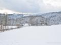 winter-elkeringhausen23
