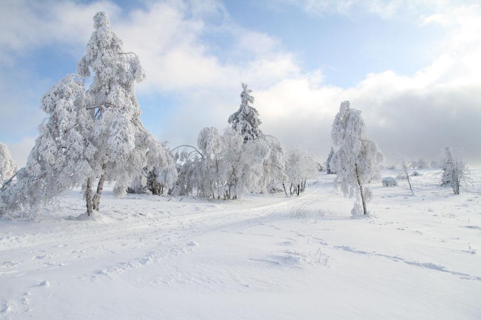 winterasten1